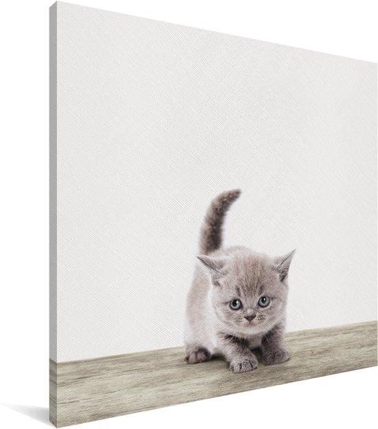 Kitten dierenprint kinderkamer Canvas 20x20 cm - Foto print op Canvas schilderij (Wanddecoratie woonkamer / slaapkamer)