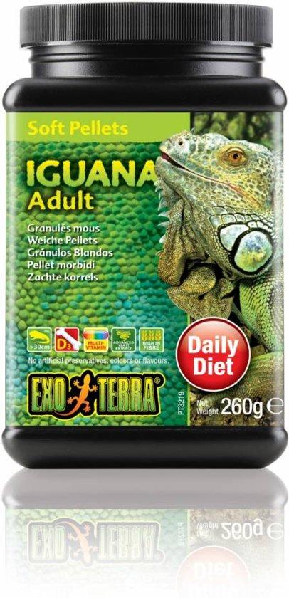 Iguana Adult 560 gram