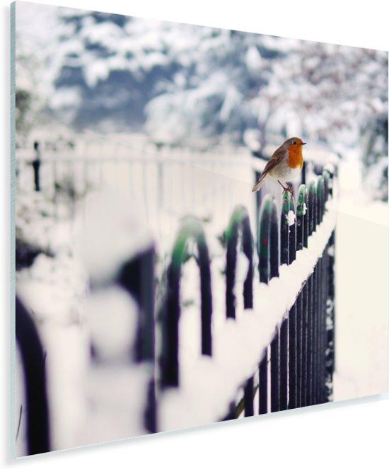 Roodborstje op een besneeuwd hek Plexiglas 90x90 cm - Foto print op Glas (Plexiglas wanddecoratie)