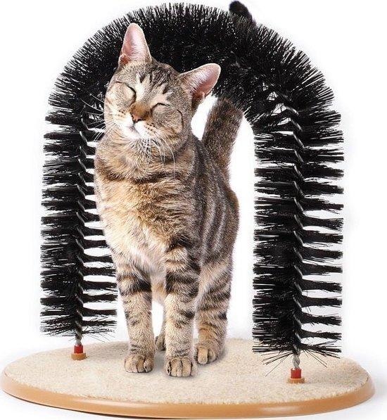 Kattenboog met kattenkruid - set van 2 stuks