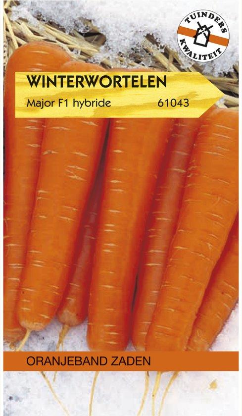 Oranjeband - Wortel Major F1 (winterwortel)