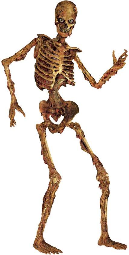Skelet Voor Halloween.Halloween Decoratie Van Skelet 180 Cm Feestdecoratievoorwerp
