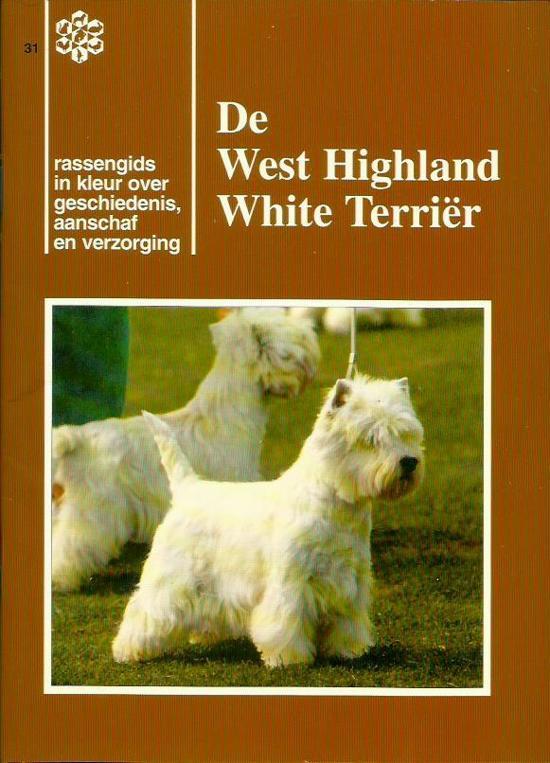 West highland white terrier - Gerben Oswald |
