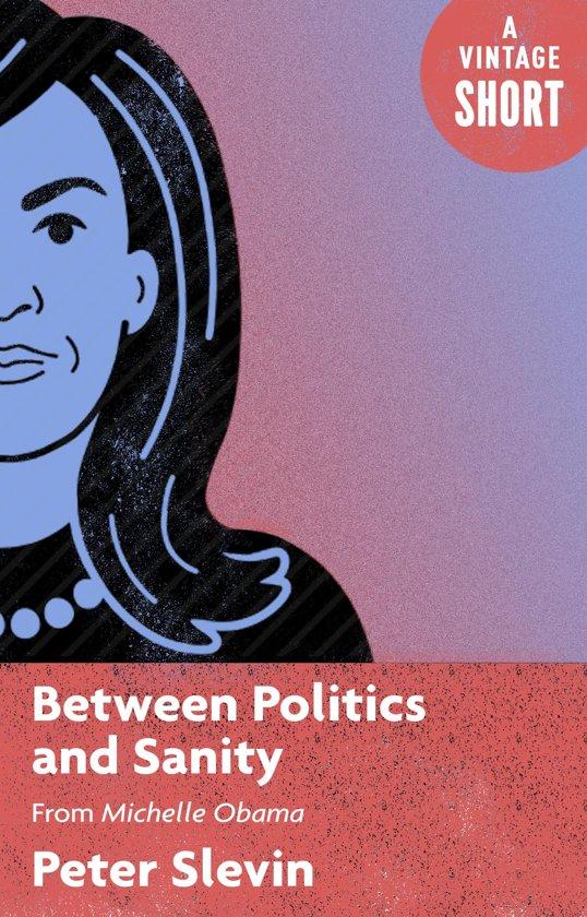 Boek cover Between Politics and Sanity van Peter Slevin (Onbekend)