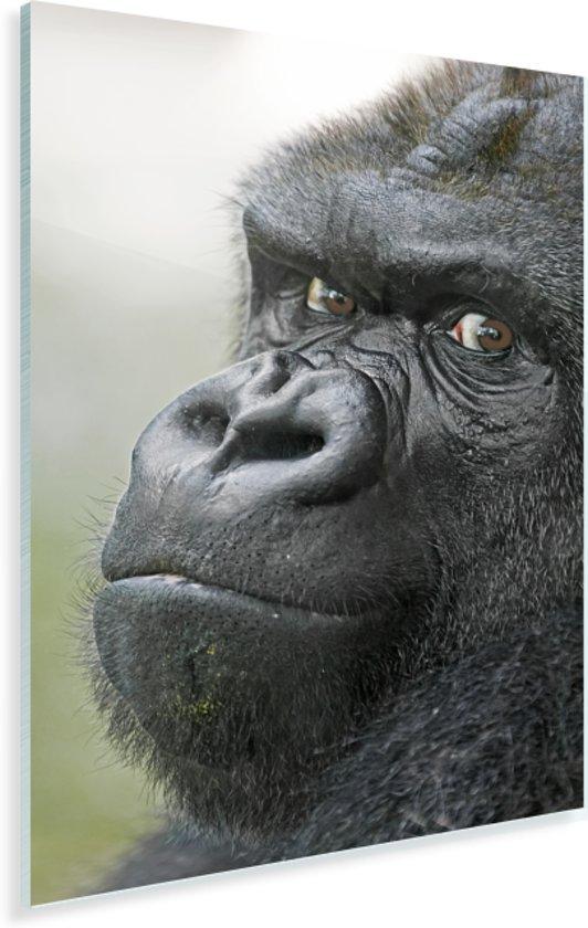 Een verbazingwekkende Gorilla Plexiglas 20x30 cm - klein - Foto print op Glas (Plexiglas wanddecoratie)