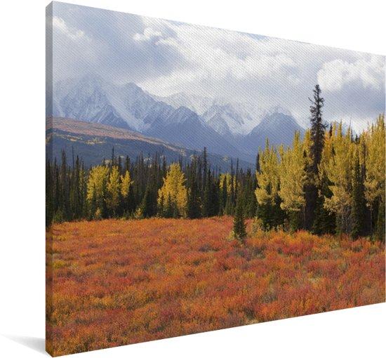 Herfstlandschap in het Nationaal park Kluane in Yukon Canvas 140x90 cm - Foto print op Canvas schilderij (Wanddecoratie woonkamer / slaapkamer)