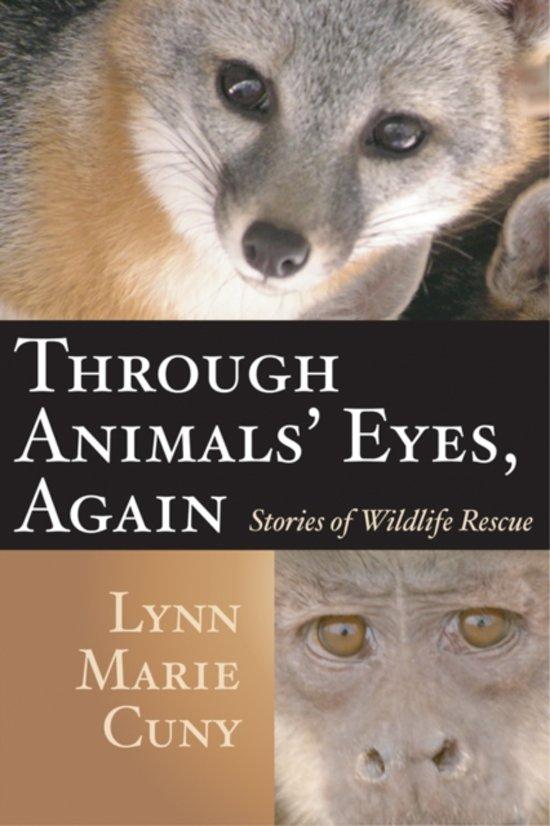 Afbeelding van Through Animals Eyes, Again