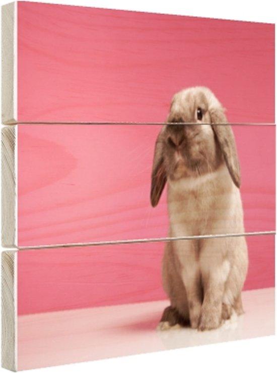 Konijnen voor roze muur Hout 160x120 cm - Foto print op Hout (Wanddecoratie) XXL / Groot formaat!