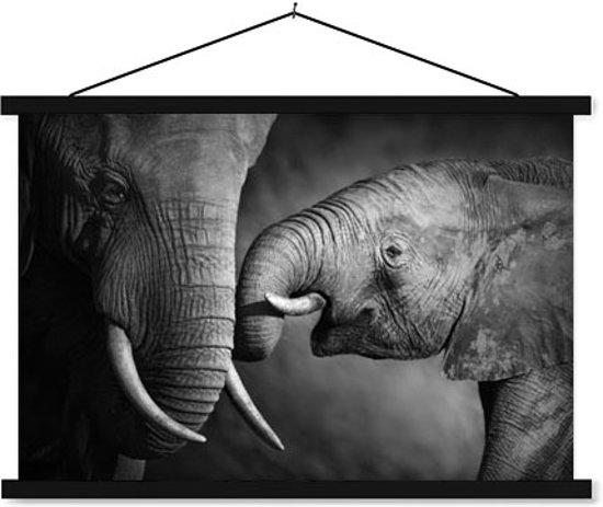 Schoolplaat Elephants