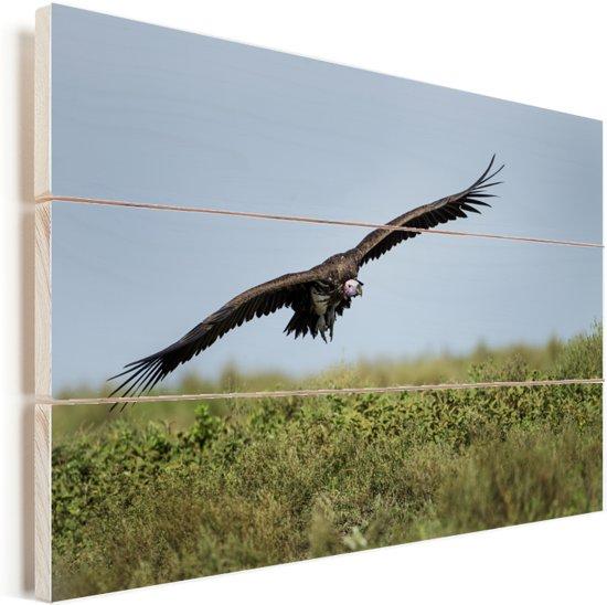 Oorgier vliegt over de savanne Vurenhout met planken 120x80 cm - Foto print op Hout (Wanddecoratie)