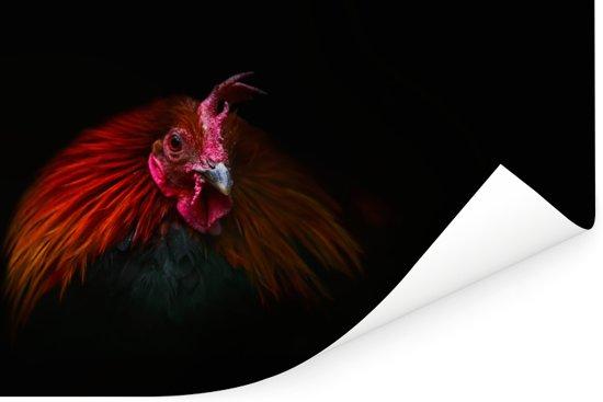 Een schitterende portret foto van een Bankivahoen Poster 180x120 cm - Foto print op Poster (wanddecoratie woonkamer / slaapkamer) XXL / Groot formaat!