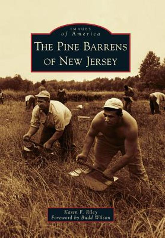 the new jersey pine barrens essay The new yorker, november 25, 1967 p 67 profile of the pine barrens, a large tract of wilderness in central & southern nj, and the inhabitants of the place in 1913, elizabeth kite, a psychological researcher, published a report called the pineys, & the publicity that was given to the most unfortunate stratum of the pine society, & the effects of it.