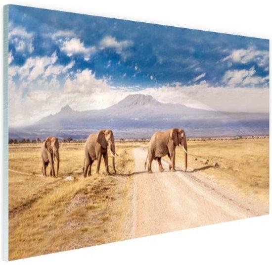 Drie overstekende olifanten Glas 90x60 cm - Foto print op Glas (Plexiglas wanddecoratie)