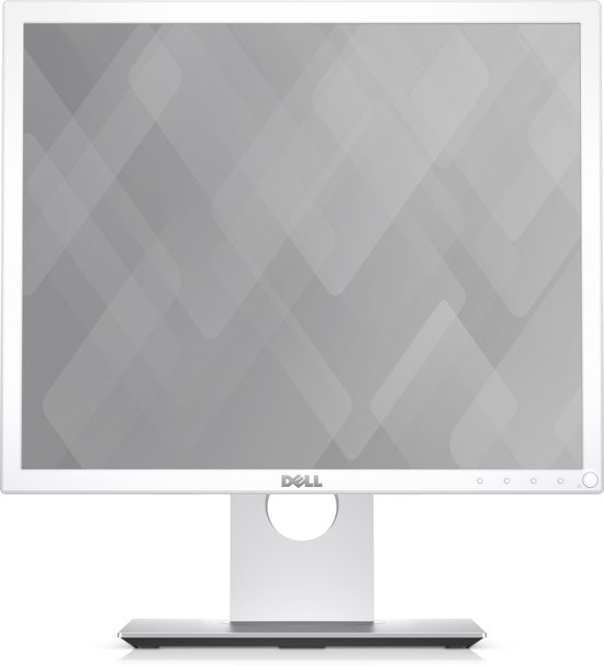 DELL P1917S 19'' HD LED Mat Flat Wit computer monitor