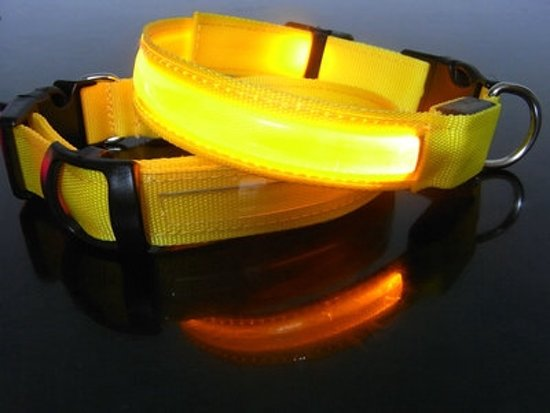 Hondenhalsband Met Licht : Bol led hondenhalsband geel small cm