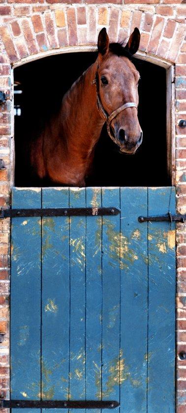 Fotobehang, Deurposter, Paard, Dieren, 90 x 200 cm. Art. 97508
