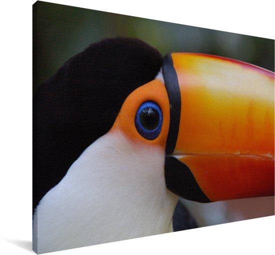 Close-up van een Reuzentoekan in Brazilië Canvas 30x20 cm - klein - Foto print op Canvas schilderij (Wanddecoratie woonkamer / slaapkamer)