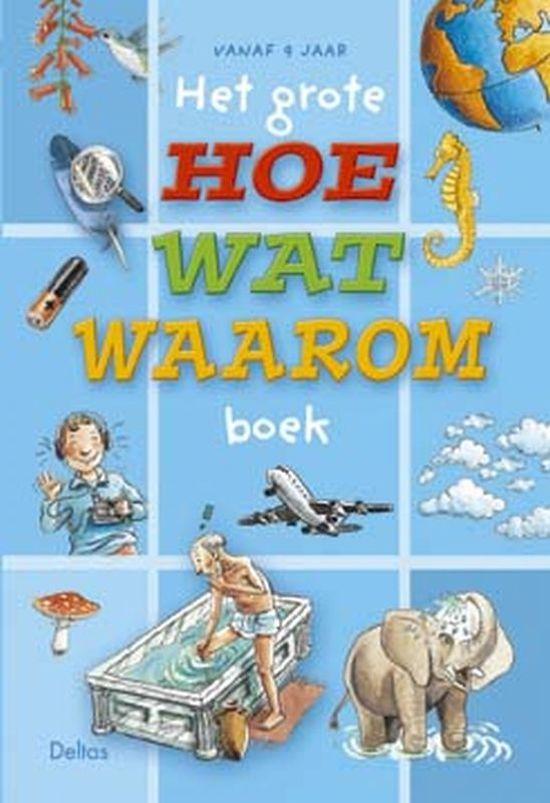 Het grote hoe wat waarom boek gie van e a roosbroeck 9789024383740 boeken - Hoe het sieren ...