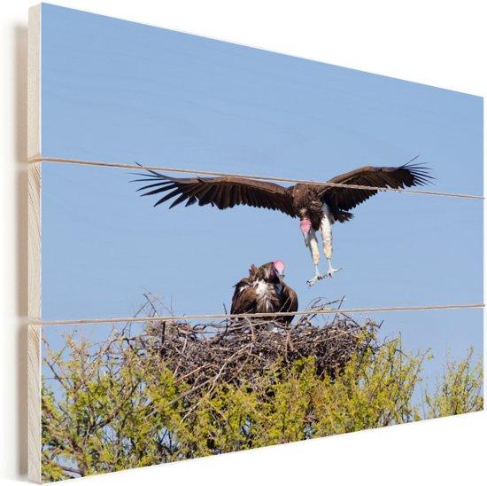 Oorgier keert terug naar zijn nest Vurenhout met planken 30x20 cm - klein - Foto print op Hout (Wanddecoratie)