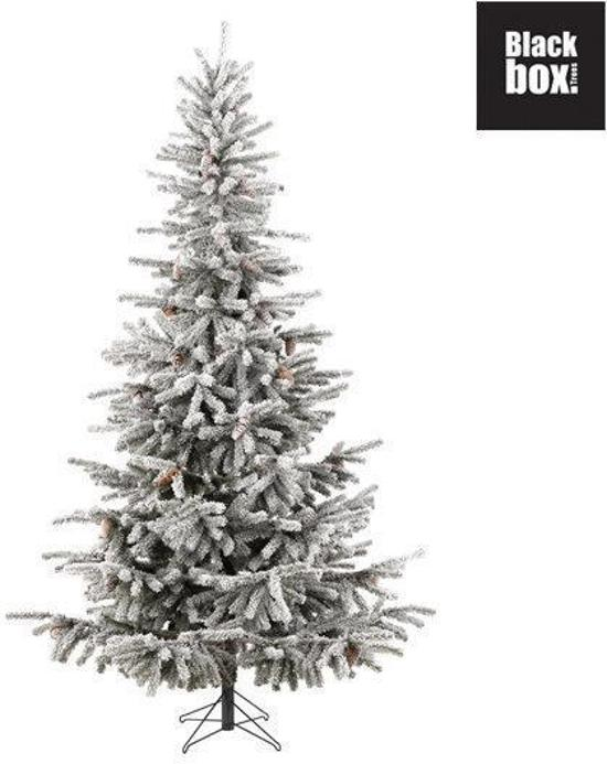black box kunstkerstboom frosted norfolk pine h260d157 zonder verlichting