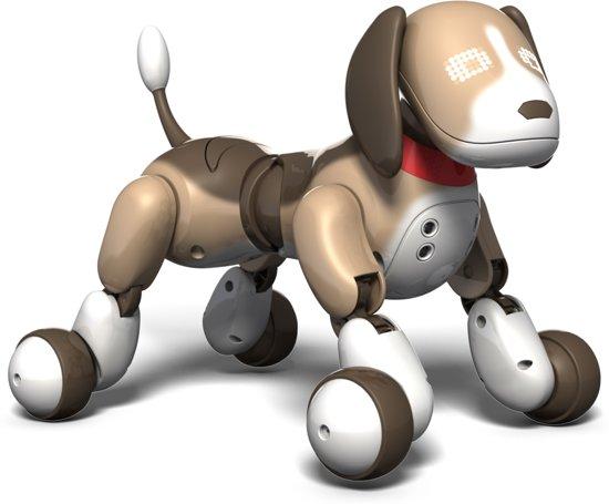 Zoomer Bentley 2.0 - Hond