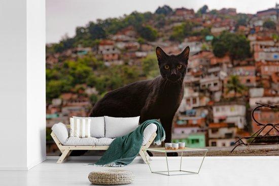Fotobehang vinyl - Een straatkat bevindt zich voor een favela in Rio de Janeiro breedte 540 cm x hoogte 360 cm - Foto print op behang (in 7 formaten beschikbaar)