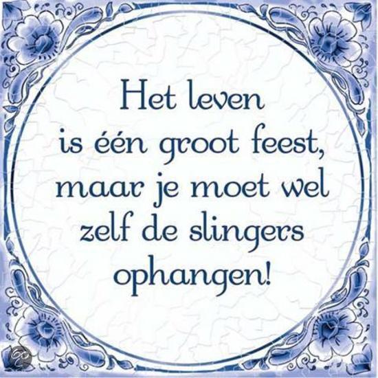 Delfts Blauwe Spreukentegel Het Leven Is één Groot Feest Maar Je