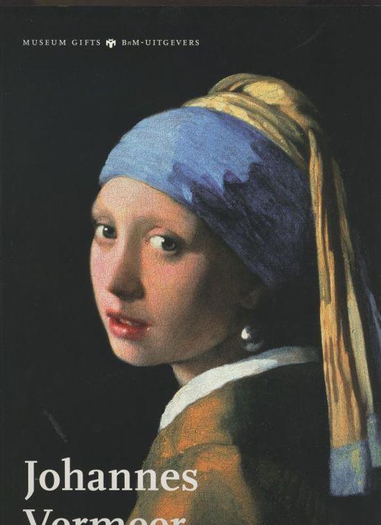 Johannes Vermeer Boek Ton Den Boon Epub Pacserealche