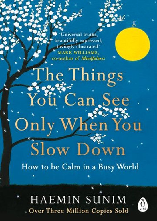 Boek cover The Things You Can See Only When You Slow Down van Haemin Sunim (Onbekend)