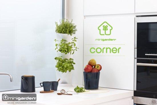 Verticale Tuin Woonkamer : Bol.com minigarden® corner basis set hoek voor verticale tuin