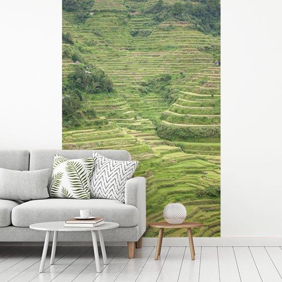 Fotobehang vinyl - De oude Rijstterrassen van Banaue in Azië breedte 190 cm x hoogte 280 cm - Foto print op behang (in 7 formaten beschikbaar)