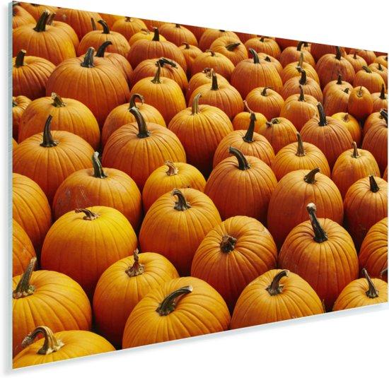 Een afbeelding volledig gevuld met oranje pompoenen Plexiglas 60x40 cm - Foto print op Glas (Plexiglas wanddecoratie)