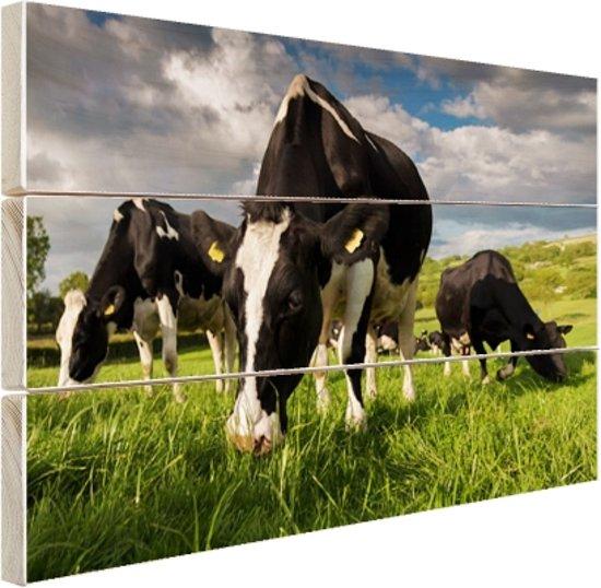 FotoCadeau.nl - Drie Holstein koeien Hout 80x60 cm - Foto print op Hout (Wanddecoratie)