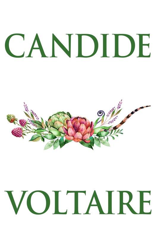 Candide Voltaire Ebook