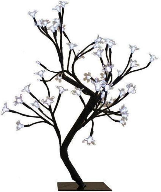bloesemboom met verlichting led
