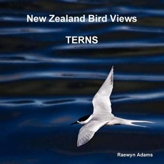 New Zealand Bird Views