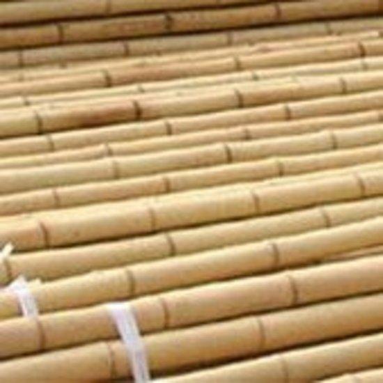 Intergard bamboestokken tonkinstokken - 180cm (250st)