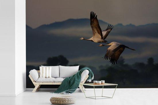 Fotobehang vinyl - Twee jufferkraanvogels vliegen over een heuvellandschap breedte 360 cm x hoogte 240 cm - Foto print op behang (in 7 formaten beschikbaar)