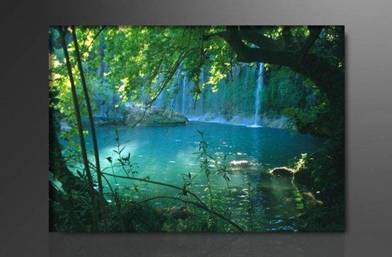 Schilderij natuur 80x60cm for Schilderij natuur