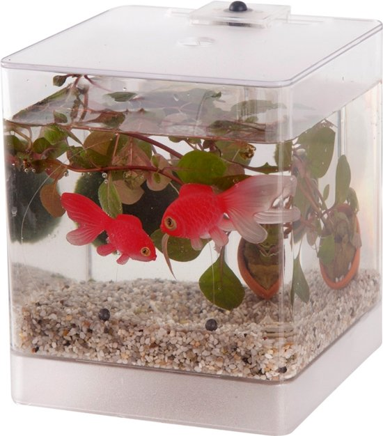 waterworld mini aquarium met led verlichting waterplant en kunststof goudvissen jpg 550x626 mini aquarium