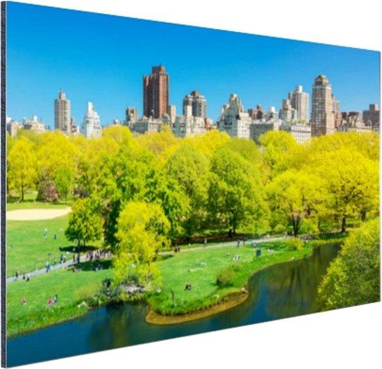 Groen Central Park in NY Aluminium 90x60 cm - Foto print op Aluminium (metaal wanddecoratie)