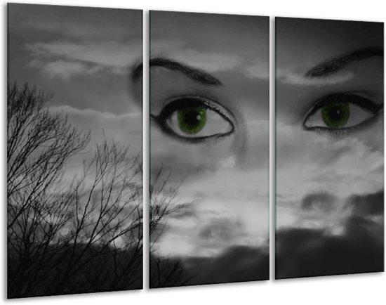 Canvas schilderij Ogen | Zwart, Grijs, Wit | 120x80cm 3Luik