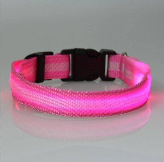 bol.com | hondenhalsband led verlichting Medium Roze