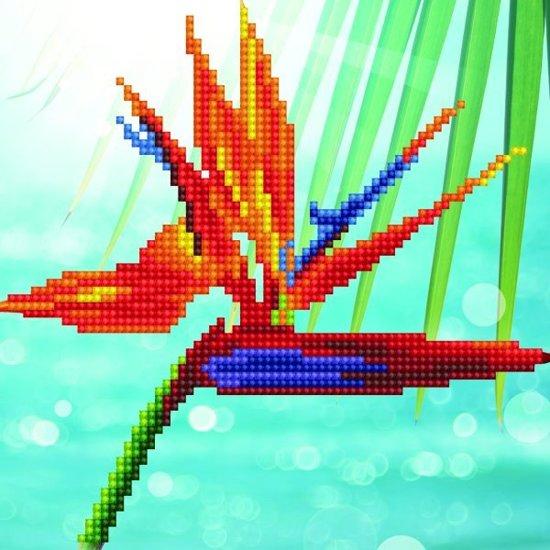 50498 DIAMOND ART(Powered by Diamond Dotz) - 20.32 x 20.32cm Kits Bird of Paradise