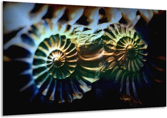 Glasschilderij Abstract   Groen, Blauw   120x70cm 1Luik   Foto print op Glas    F000938