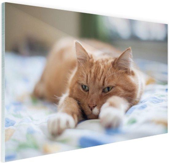 FotoCadeau.nl - Kat ontspannen op bed Glas 30x20 cm - Foto print op Glas (Plexiglas wanddecoratie)