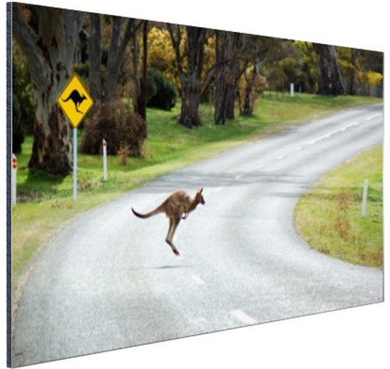 Overstekende kangoeroe Aluminium 90x60 cm - Foto print op Aluminium (metaal wanddecoratie)