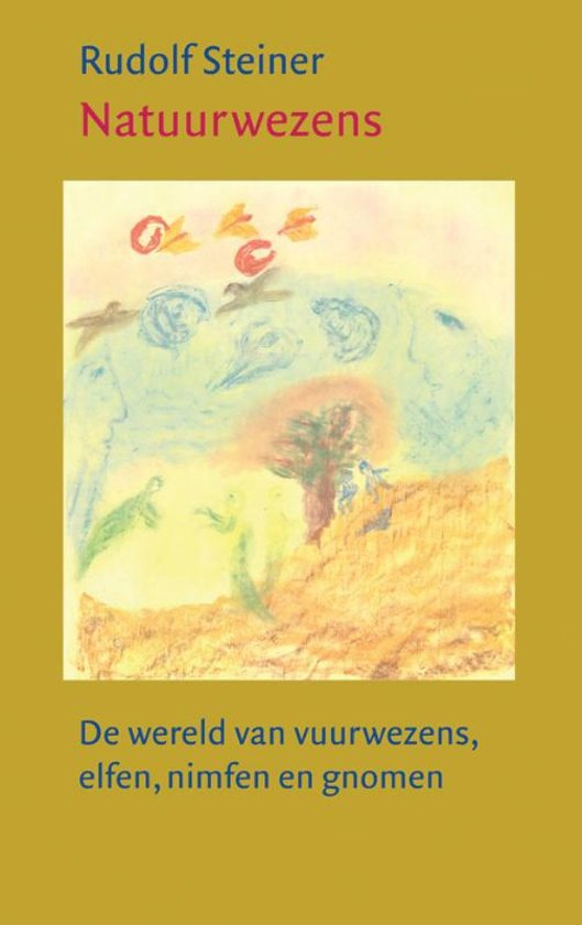 Boek cover Natuurwezens van Rudolf Steiner (Paperback)