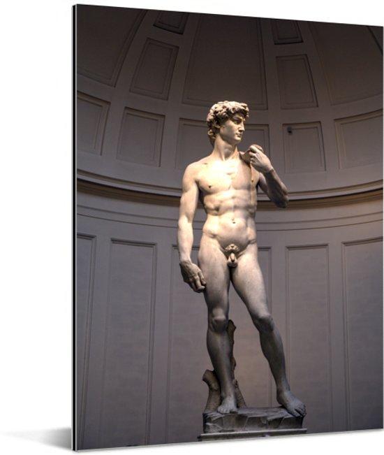 Het beroemde David standbeeld in Italië Aluminium 60x80 cm - Foto print op Aluminium (metaal wanddecoratie)