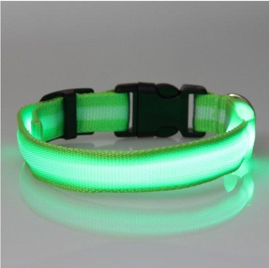 bol.com | hondenhalsband led verlichting large Groen